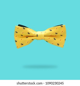 minimal concept. yellow male bowtie over colorful background