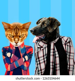Minimal Contemporary collage art. Stylish hipster dog and cat. Difficult relationship