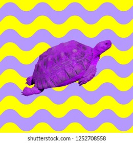 Minimal Contemporary collage. Purple turtle in colorful ocean vibes