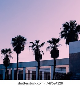 Minimal design. Palm trees Urban Tropical Purple fashion mood