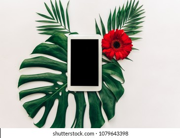Minimal Flat lay digital tablet over tropical leaf monstera. Top view