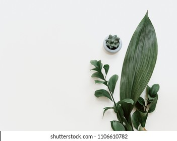 Minimal green leaf on pastel background. Flat lay, top view, copy space