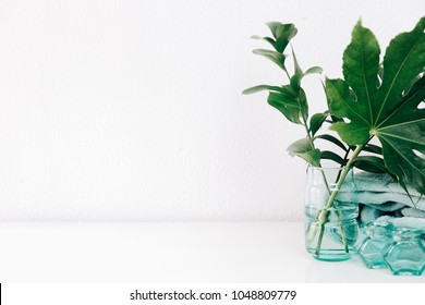Minimal home decor with copy space. Green leaves in vase