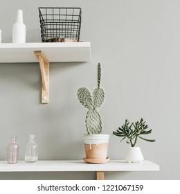 Minimal modern interior design. Cactus in flowerpot at pastel wall.