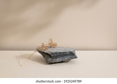 Minimal modern natural beauty. Background for branding and product presentation. Still life mock up photo of a gray stone and a dry flower with long shadow on beige table.