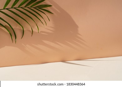 Minimal modern product display on textured beige background with palm shadows overlay - Shutterstock ID 1830448364