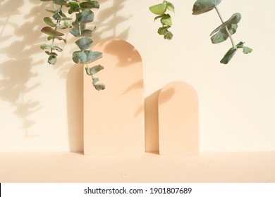 Minimal modern product display on beige background with eucaliptus leaves