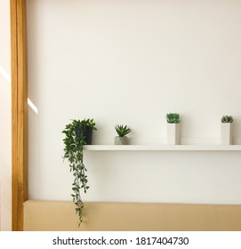 minimal shelf with green small plants near bed on the white wall background. minimal decoration at home