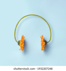 Minimal spring and music concept. Two orange daisy flowers making a headset on a simple blue background. Sounds of nature.