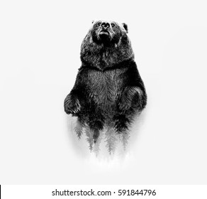 Minimal stile double exposure with a bear and forest