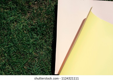 Minimal still life of some pink and yellow cardboard over green grass
