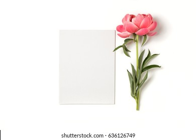 Minimal styled flat lay with peony flower with petals and blank notebook page. Mock up top view isolated on white.