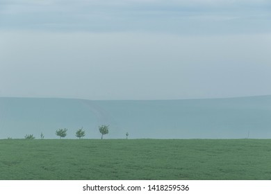 Minimalism landscape with a few young trees on the top of the hill overgrown with green grass under the blue striped sky in the morning mist.