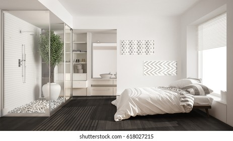 Minimalist Bedroom And Bathroom With Shower And Walk In Closet, Classic  Scandinavian Interior Design