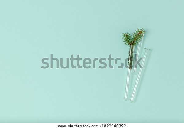 Minimalist Christmas composition of glass test tubes and a spruce sprig on a mint background with copy space. Top view, flat lay. Medical New Year's concept