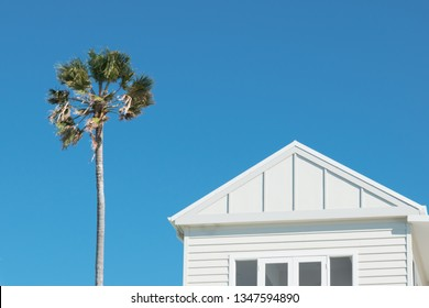 Minimalist image of a Hamptons style white Sydney house featuring timber cladding and a single palm tree against a bright blue summer sky.