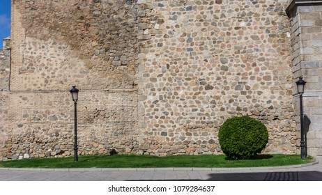 Minimalist scene located at Spain of a medieval wall, grass, a small and well-formed tree.