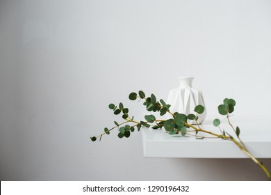 Minimalist still life, green eucalyptus branch and emty ceramic vase on white table by white wall