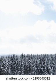 Minimalist Winter Landscape with snowy coniferus trees and blue sky in Germany