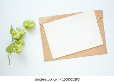 Minimalistic card mockup with  hop branch, flower, craft envelope, blossom, flat lay, top view