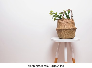 Minimalistic interior decor with plant in straw basket on the white wall background