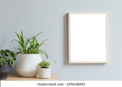 Minimalistic room interior with mock up photo frame on the brown wooden table with beautiful plant in design hipster white pot. Grey walls. Stylish and  floral concept of mock up poster frame.