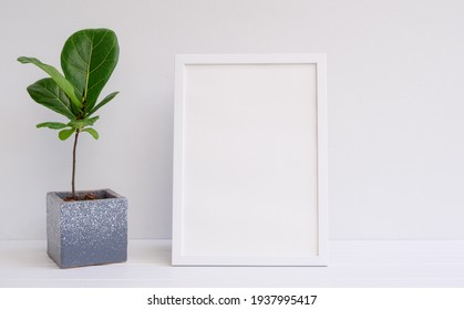 Mininmal stylish mock up poster frame and houseplant in modern cement pot on white wood table and wall background,Fiddle leaf Fig or Ficus Lyrata exotic tree for interior