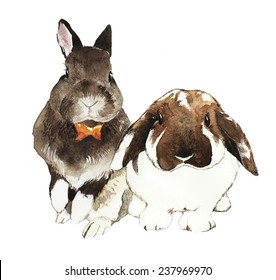 Mini-rex and Holland Lop Bunnies. Watercolor Painting Illustration.