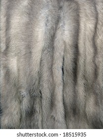 Mink fur for use as a background texture.