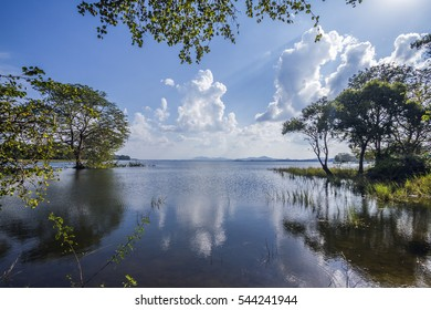 Minneriya reservoir, Sri Lanka nature reserve
