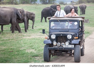 MINNERIYA, SRI LANKA. July 21, 2016: Minneriya National Park. A jeep carrying many tourists visiting the famous national park of Sri Lanka. A car goes into the park in search of wild animals.