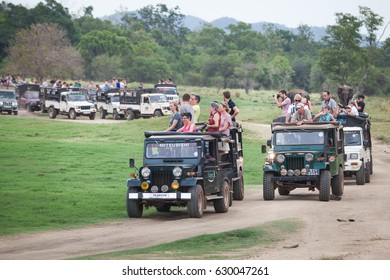 MINNERIYA, SRI LANKA. July 21, 2016: Minneriya National Park. Many jeeps carrying many tourists visiting the famous national park of Sri Lanka. A row of cars goes into the park in search of animals.