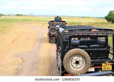 Minneriya / Sri Lanka - July16, 2018: Jeep safari at Minneriya National Park