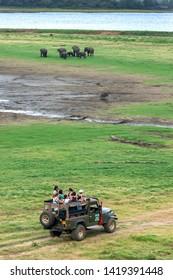 MINNERIYA, SRI LANKA - JUNE 10, 2017 : A safari jeep heads towards a herd of wild elephants graze on grassland adjacent to the tank (man made reservoir) within Minneriya National Park in Sri Lanka.