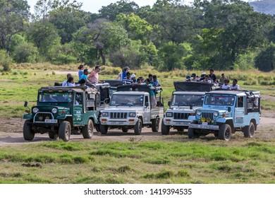 MINNERIYA, SRI LANKA - JUNE 10, 2017 : A fleet of safaei jeeps loaded with tourists parked within Minneriya National Park in cental Sri Lanka.