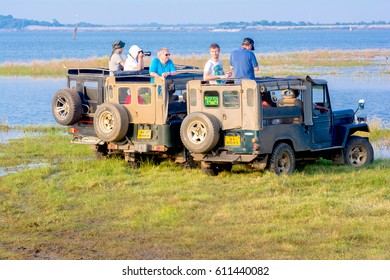 MINNERIYA, SRI LANKA â?? MARCH 19: Tourists are watching wild elephants from safari jeeps in Minneriya National Park on March 19 2017 in Minneriya, Sri Lanka