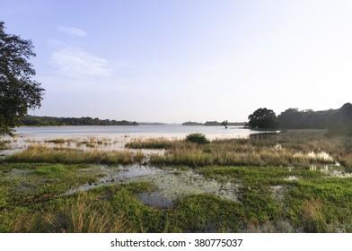 Minneriya tank is a reservoir in Sri Lanka made by an old civilisation. King Mahasena ordered a dam build across the Minneriya River. Minneriya, Sri Lanka / Minneriya lake, reservoir/