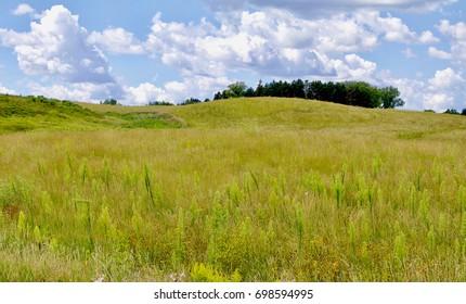 Minnesota rolling praire green grasssy field landscape