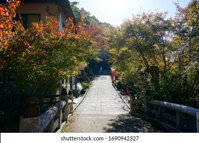Mino Quasi-national Park (Mino Waterfall), Osaka, Japan - 13 November 2019: Capture the road to the Mino Quasi-national Park