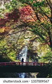Minoh waterfall in autumn season, Osaka Japan