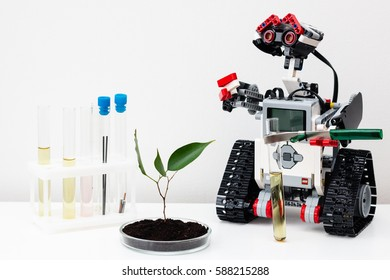 Minsk, Belarus -  February 26, 2017: Lego robot grows plant, conducts chemical experiments. The tubes. Chemistry. Biology. Robotics. E-learning.  STEM education. Global warming. Ecological problem.