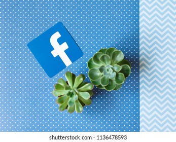 Minsk, Belarus. July, 2018. Logo of the famous social network Facebook well known all round the world. Communicate with friends through laptop and Ipad. Blue background. Succulents.