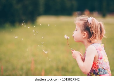 Minsk, Belarus, July 23, 2017: Cute little girl blowing a dandelion in the spring