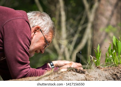 Minsk, Belarus. May 12, 2019. Middle-aged man photographs forest flowers on a mobile phone. The concept of active lifestyle in adulthood.