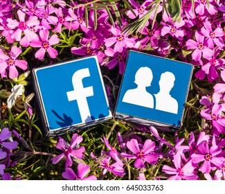 Minsk, Belarus - May, 2017: Facebook logo printed on cube. Flowers around.