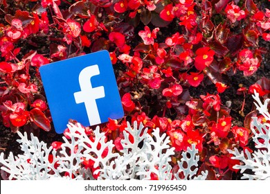 Minsk, Belarus - September, 2017: Printed on paper logos of the famous social network Facebook. Flowers are on the background. Concept. Autumn.
