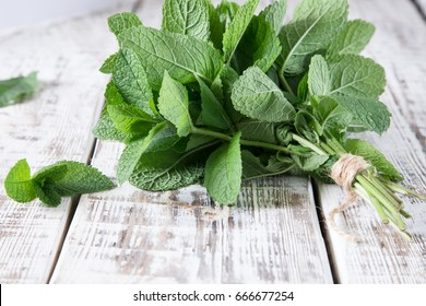 Mint. Bunch of Fresh green organic mint leaf on wooden table closeup. Selective focus