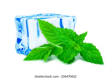 mint and ice cube