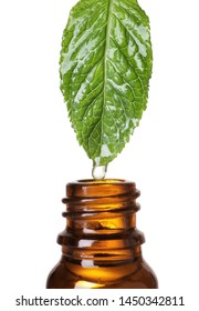 Mint leaf with drop of essential oil over bottle against white background