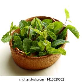 Mint Leaves - Daun Mint - in wooden basket